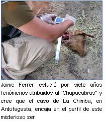 Más sobre el Chupacabras